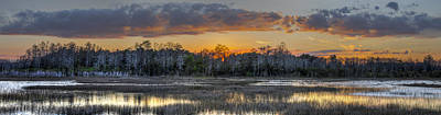 Everglades Panorama Art Print