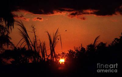 Everglades Sunset Art Print by Steven Valkenberg