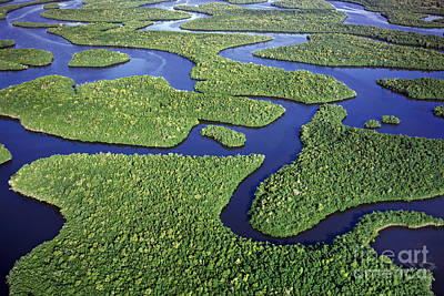 Everglades Waterways Art Print