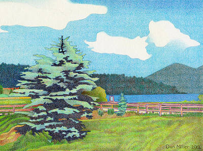 Evergreen Lake Summer Art Print