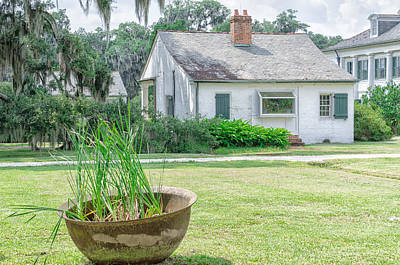 Bath Time - Evergreen Plantation Back by Jim Shackett