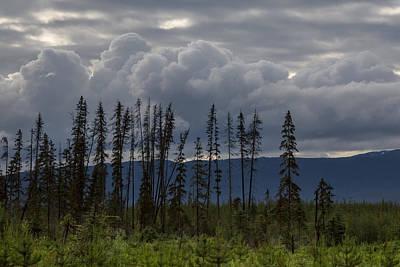 Photograph - Evergreen Storms by Ryan Heffron