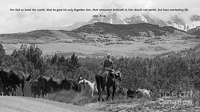 Cattle Drive Photograph - Everlasting Life by Janice Rae Pariza