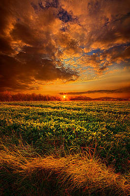 Picnic Table Photograph - Every Step Of The Way by Phil Koch