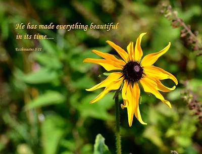 Photograph - Everything Beautiful by Deena Stoddard