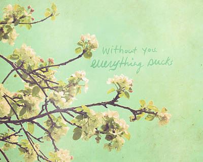 Cherry Blossoms Photograph - Everything Sucks by Lisa Barbero