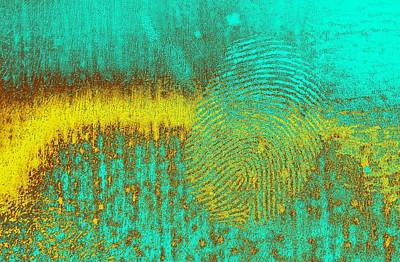 Digital Art - Evidence by T T