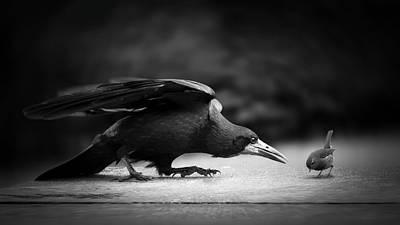 Big Birds Photograph - Evil by Richard Bires