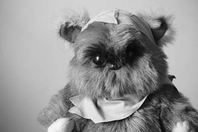 Ewok Photograph - Ewok by Southern Tradition