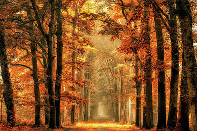 Magical Photograph - Exit The Portal by Lars Van De