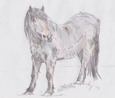 Drawing - Exmoor Pony by Mike Jory