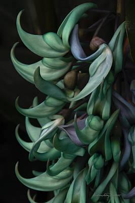 Exotic Jade Vine Art Print by Karen Casey-Smith