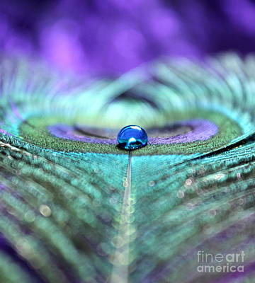 Peacock Photograph - Exotic Peacock by Krissy Katsimbras
