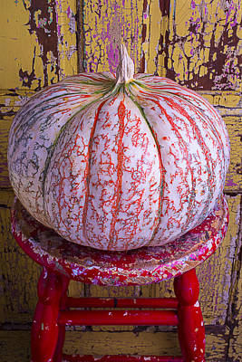 Chip Photograph - Exotic Pumpkin by Garry Gay