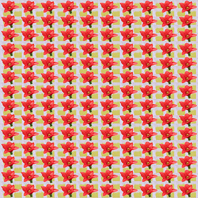 Nature Photograph - Exotic Red Tulip   Patterns Tiny Sparkle Parallal Horizontal Strips Summer Flower Yellow And Shade W by Navin Joshi