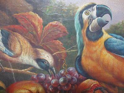 Exotic Wild Tropical Rainforest Parrots Art Print