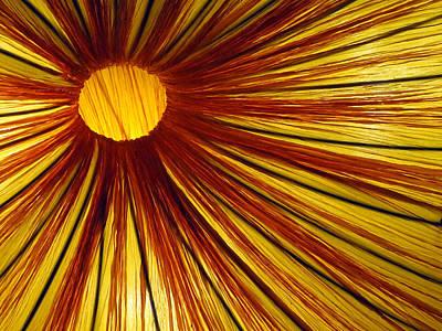 Photograph - Exploding Sun by Rick Locke