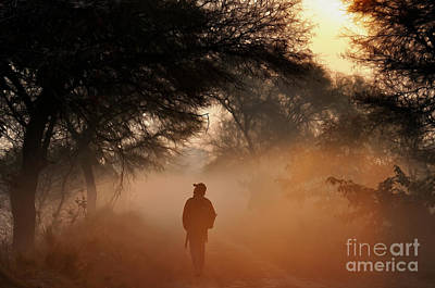 Photograph - Explorer The Nature by Manjot Singh Sachdeva