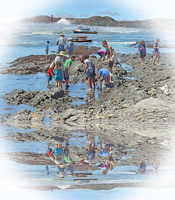 Photograph - Exploring The Tite Pools by Jim Fitzpatrick