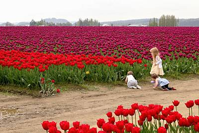 Photograph - Exploring The Tulip Fields by Jennifer Wheatley Wolf