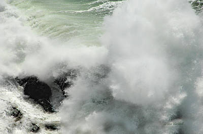 Bonita Point Photograph - Explosive Wave by Donna Blackhall