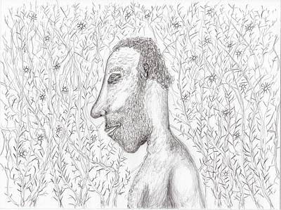 Drawing - Exposed In The Brambles by Jim Taylor
