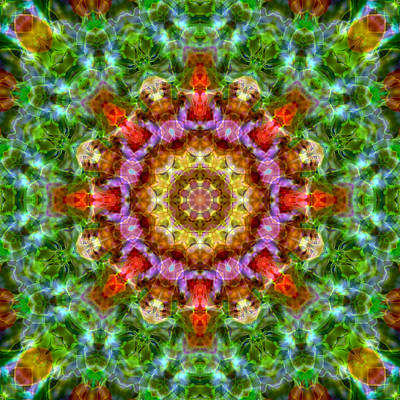 Photograph - Expression Mandala by Beth Sawickie