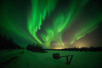Photograph - Extreme Aurora Activity Salcha by Roger Clifford