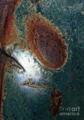Photograph - Extremophile Abstract by Lee Craig