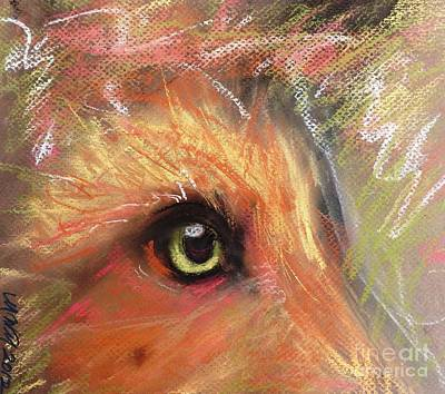 Eye Of Fox Art Print