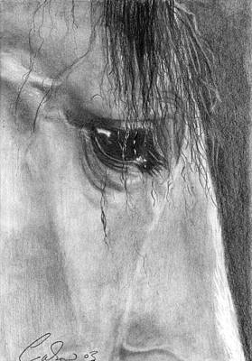 Forelock Drawing - Eye Of The Beholder by Caron Wiedrick