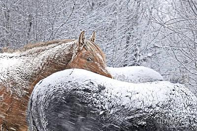 Judy Wood Digital Art - Eye Of The Storm by Judy Wood