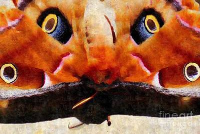 Greek Insects Photograph - Eye On You - Silk Paint by Anita Faye