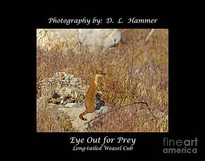 Eye Out For Prey Art Print by Dennis Hammer
