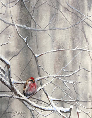 Birds In Snow Wall Art - Painting - Eyeing The Feeder Alaskan Redpoll In Winter by Karen Whitworth