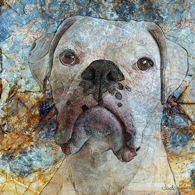 Boxer Dog Digital Art - Eyes Front by Judy Wood