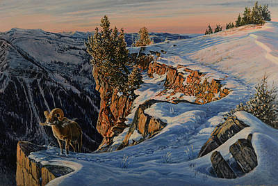 Painting - Eyes Of The Canyon by Steve Spencer