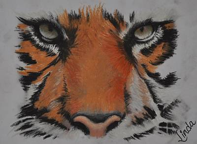 Pastel - Eyes Of The Tiger by Linda Ferreira