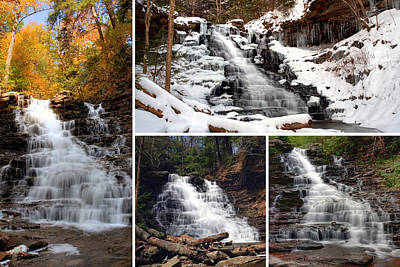 Photograph - F L Ricketts Falls In Every Season by Gene Walls