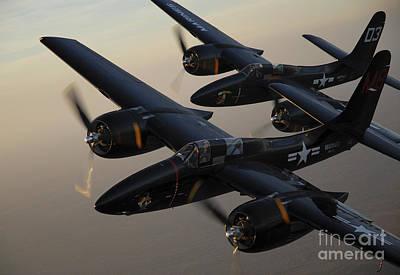 Transportation Royalty-Free and Rights-Managed Images - F7f Tigercats Flying Over San Antonio by Phil Wallick