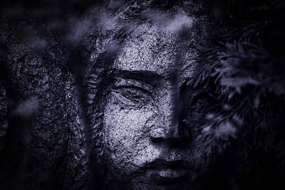 Photograph - Face In A Garden by Phil Cardamone