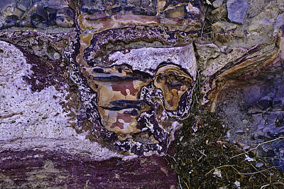 Photograph - Face In The Desert 2 by Sherri Meyer