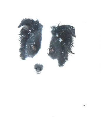 Face In The Snow Art Print by Aliceann Carlton
