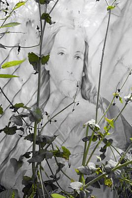 Face Of Jesus Seguin Texas 2010  Original by John Hanou