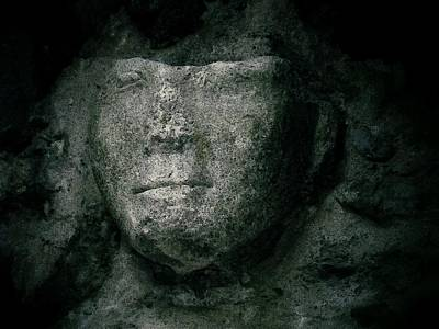 Photograph - Face Of Stone by Nadalyn Larsen