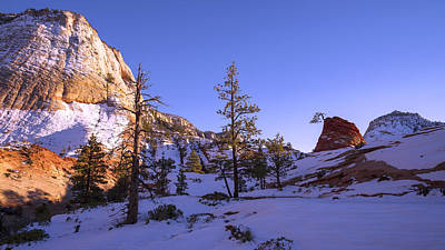 Zion National Park Photograph - Fade by Chad Dutson