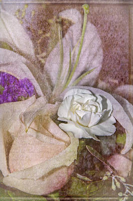 Photograph - Faded Beauty by Susan  McMenamin