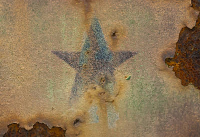 Photograph - Faded Glory by Christi Kraft