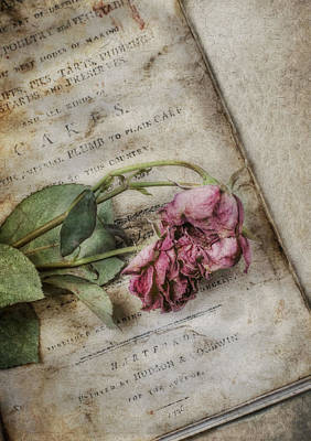 Cookbook Photograph - Faded by Robin-lee Vieira