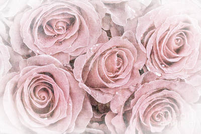 Faded Roses Art Print by Jane Rix